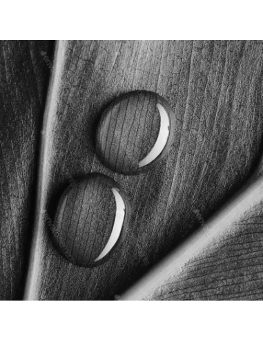 Gold Foam Thermal Make-Up Remover 200 Ml.